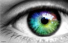 Das Auge ist mit