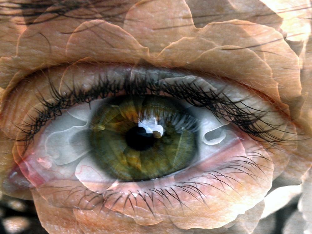 Das Auge meiner Frau