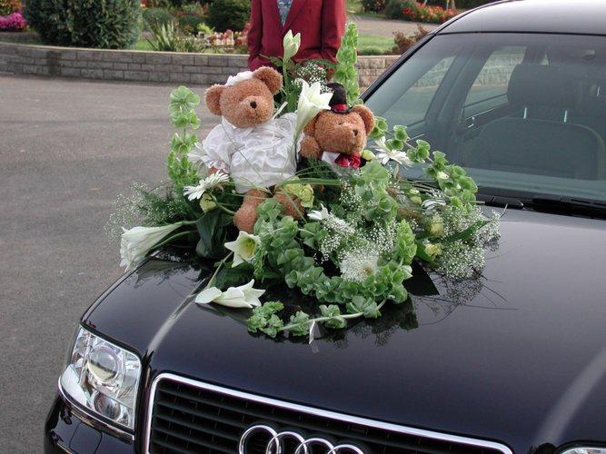 Das Bärenpaar