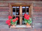 Das Bauernhof-Fenster