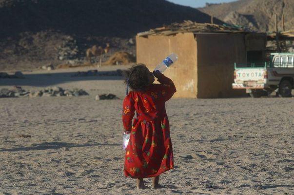 Das Beduinenädchen