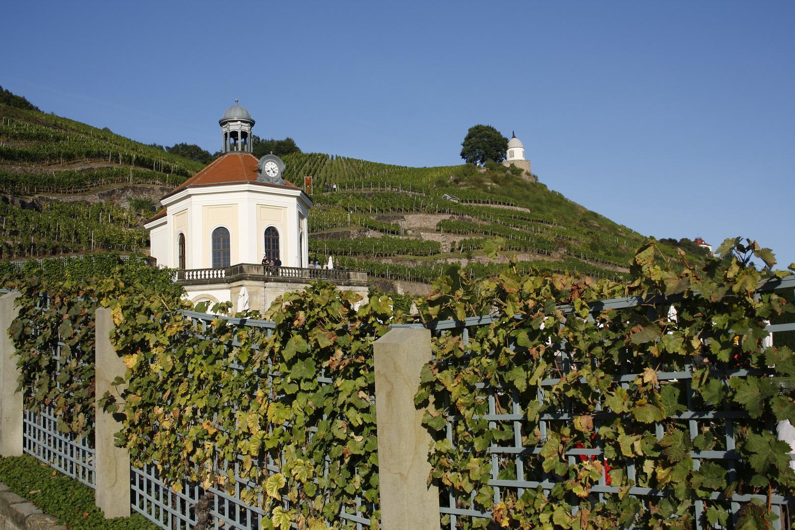 Das Belvedere auf Schloß Wackerbarth- Radebeul