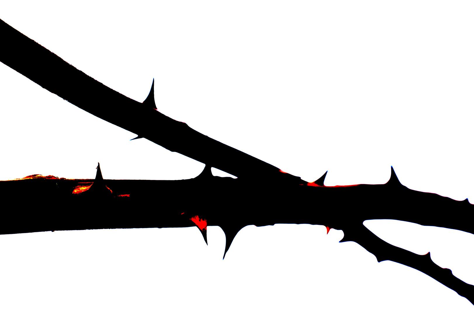 Das Blut der Schuld