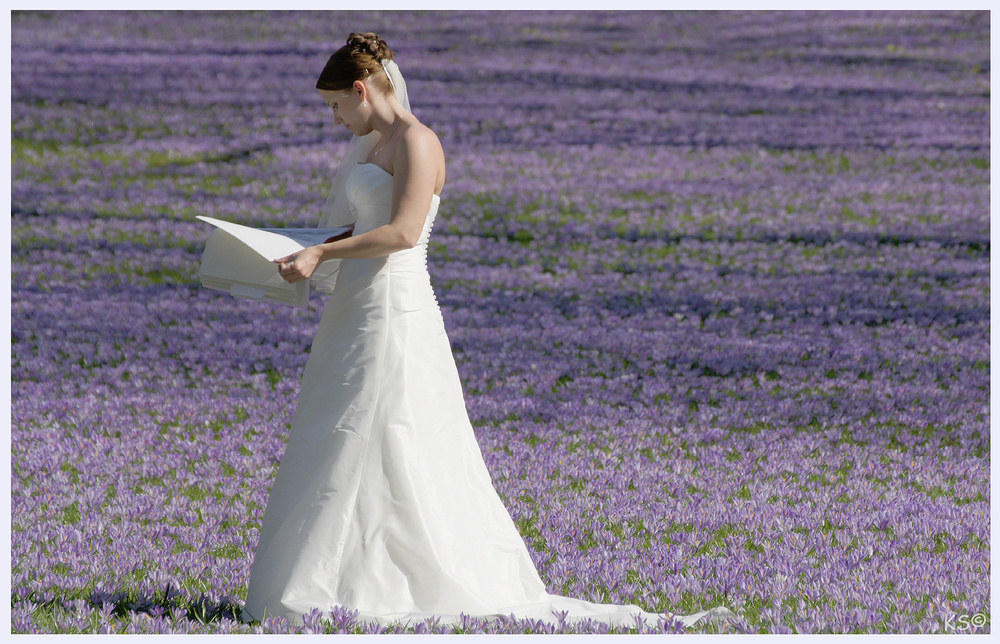 Das Buch der Braut