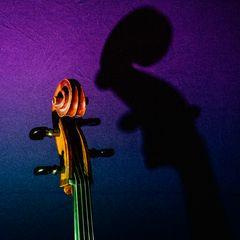 Das Cello 2