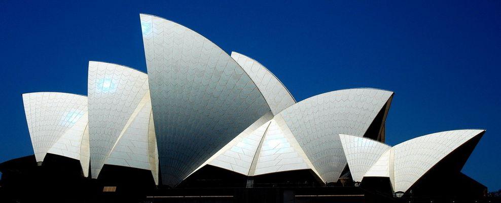 Das Dach der Oper