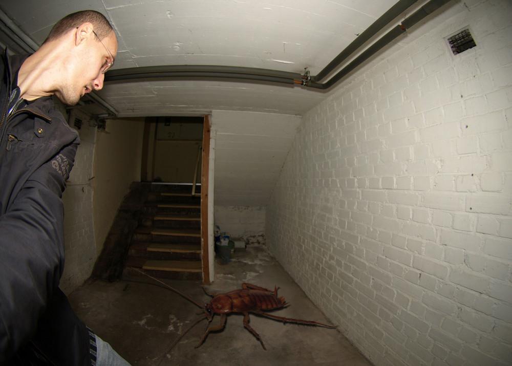 Das Ding im Keller