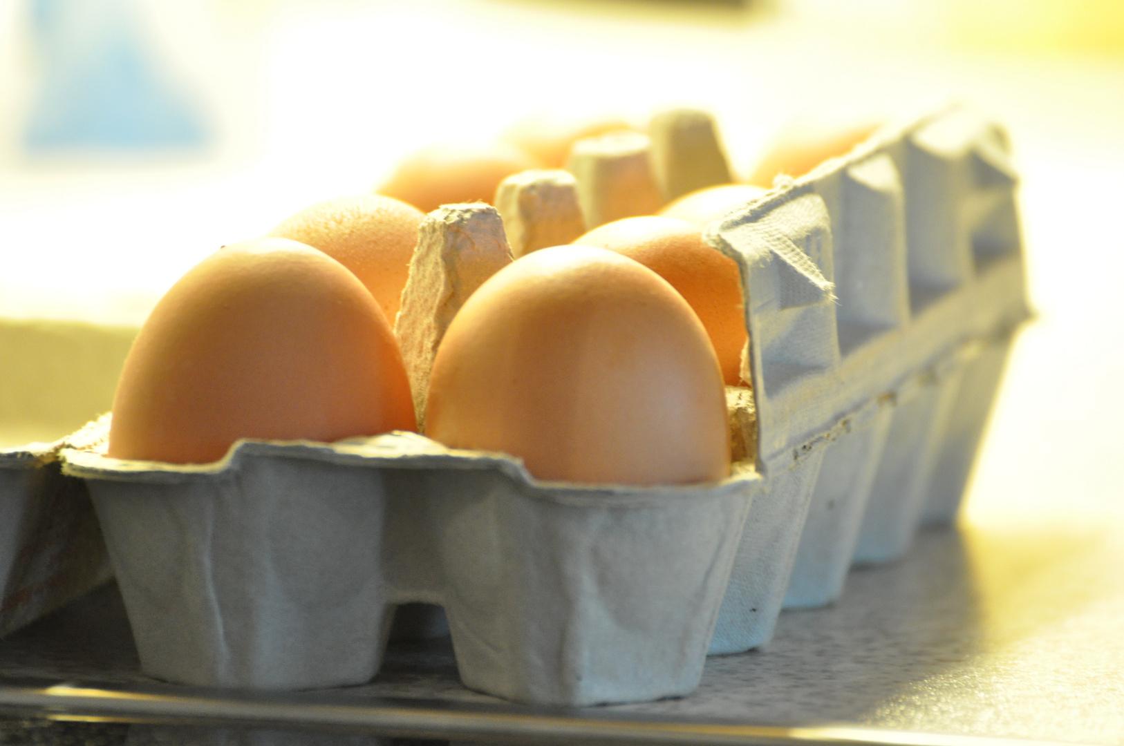Das Ei im Karton...