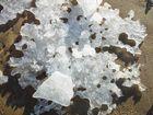 Das Eis schneidet Grimassen
