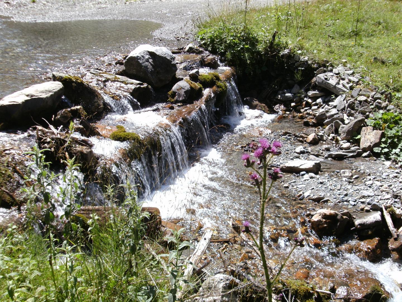 Das Element Wasser