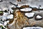 Das Element Wasser im Winter
