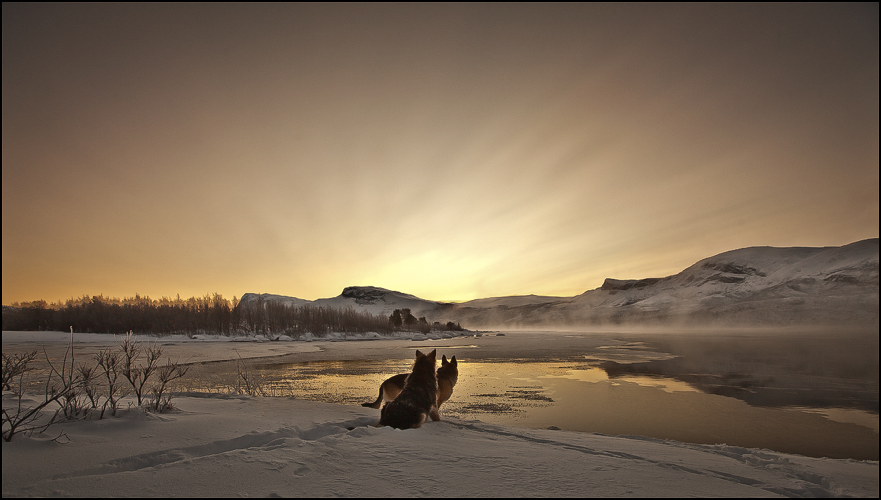 Das Ende der Polarnacht ...