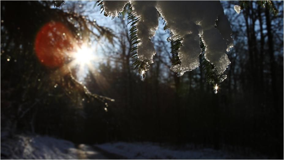 Das Ende des Winters.....vielleicht...