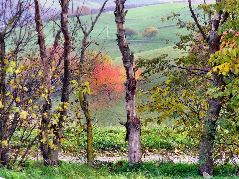 Das Ende einer schönen Herbstwanderung