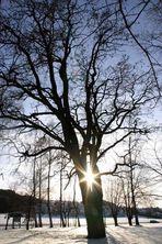 Das Ende eines schönes Wintertages