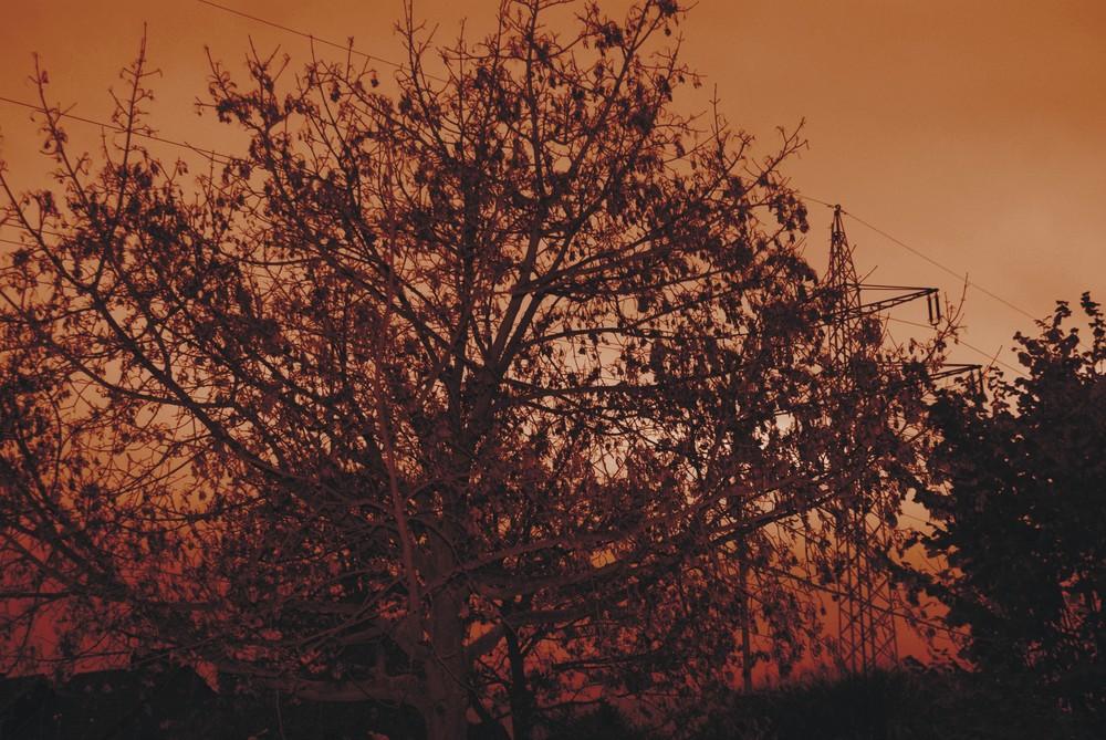 Das Ende vom Herbst