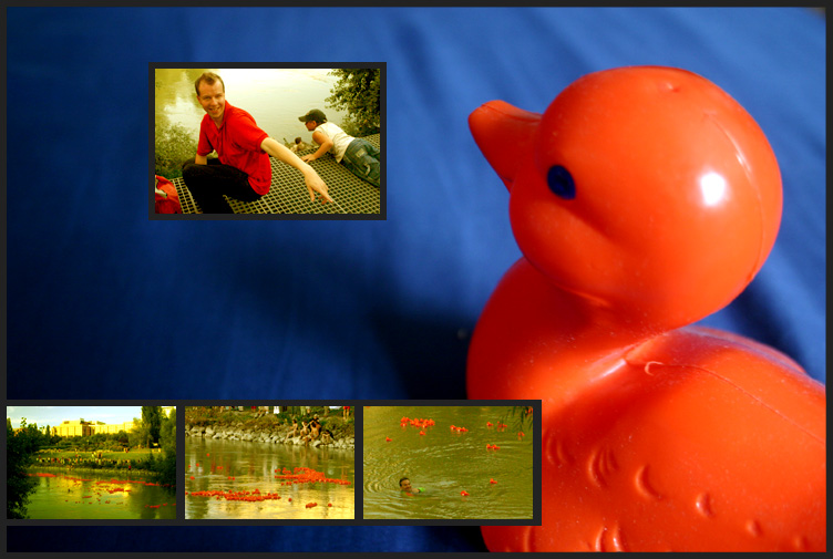 Das Entenrennen