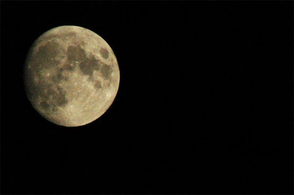 Das erste Mond-Bild