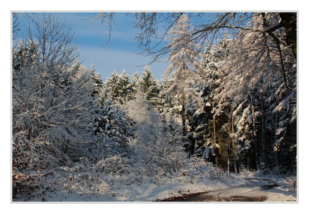 das erste Schnee...