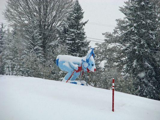 Das erste Skihaserl der Saison 2009/2010