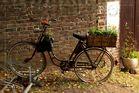 Das Fahrrad des Gärtners ?