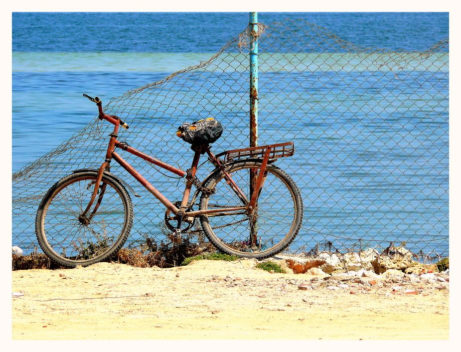 Das Fahrrad..