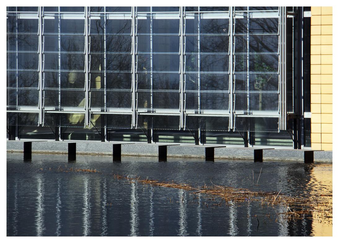 das Fenster am Teich