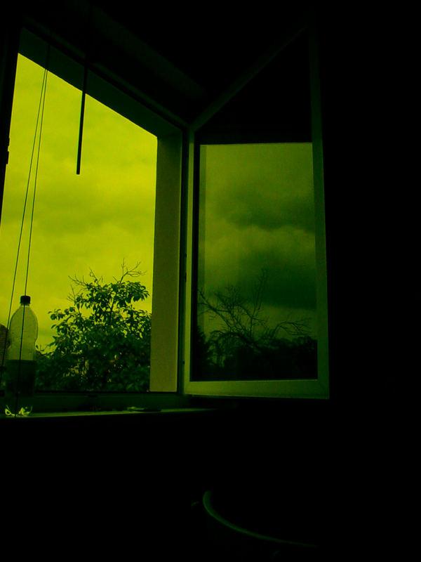 das Fenster ins Grüne