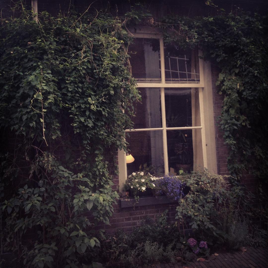 Das Fenster vom Hof