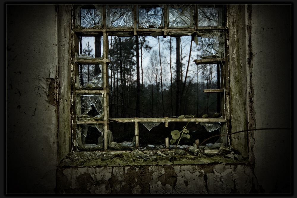 Das Fenster zum...
