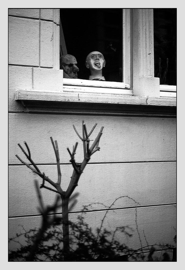 >Das Fenster zum Garten