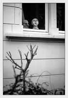 >Das Fenster zum Garten<