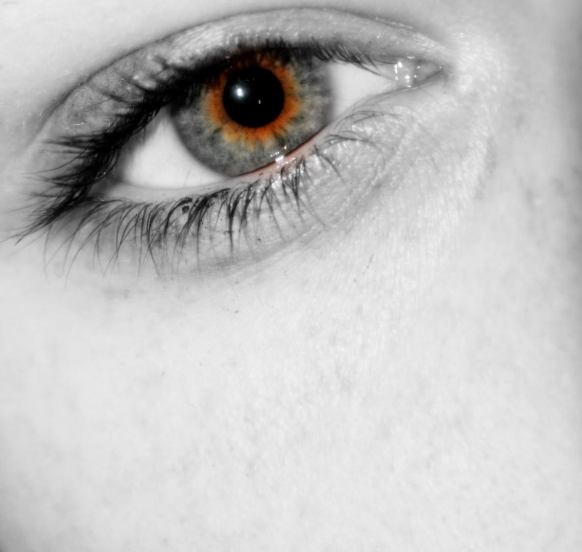 das feuer der Augen