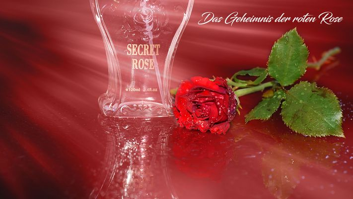 Das Geheimnis der roten Rose...