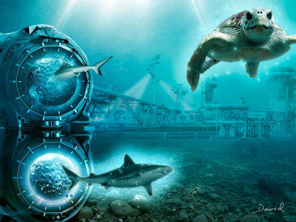 Das Geheimnis des Meeresleuchtens