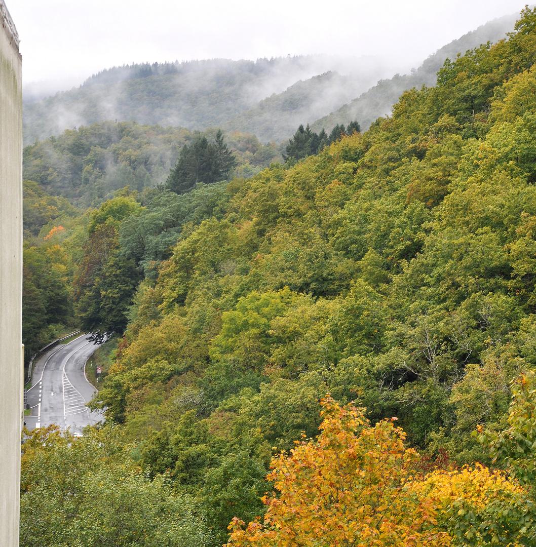 Das geheimnisvolle Dampfbad der Waldgeister....