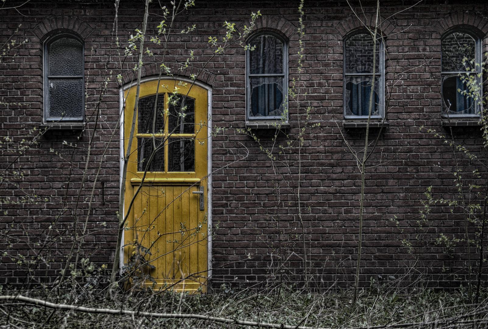 Das Gelbe .... aber nicht vom Ei ....