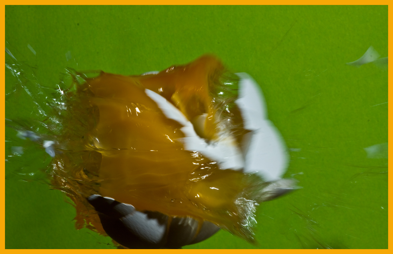 Das Gelbe vom EI -highspeed-