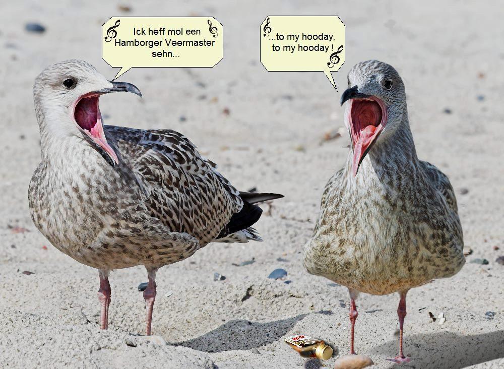 Das Gesangsduo