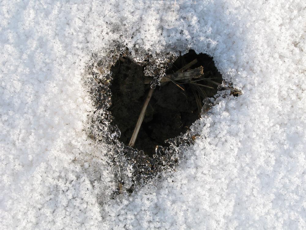 Das geschmolzene Herz