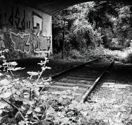 Das Gleis ins Nirgendwo