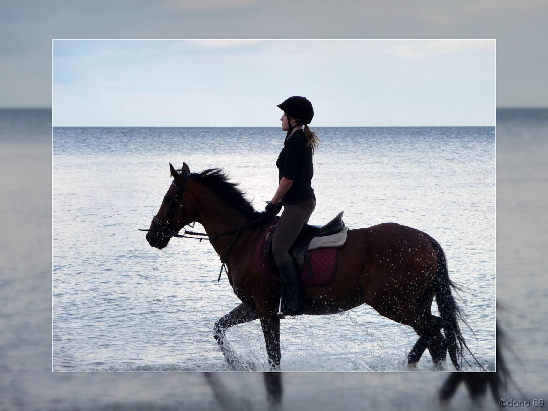 Das Glück aud Erden,liegt auf den Rücken von Pferden....