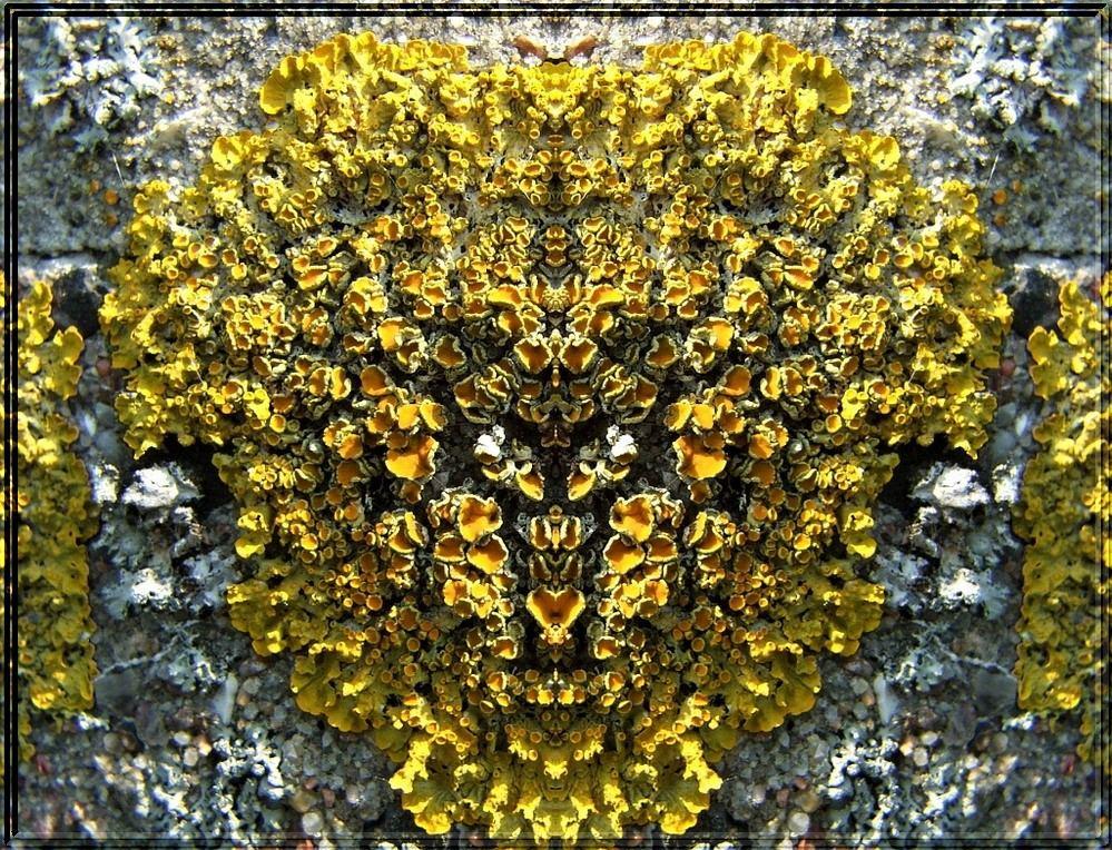 Das Goldene Amulett von Amahleh.....