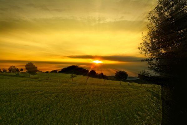 Das gold'ne Licht der Abendsonne