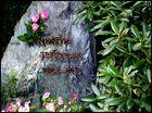 Das Grab meiner Mutter