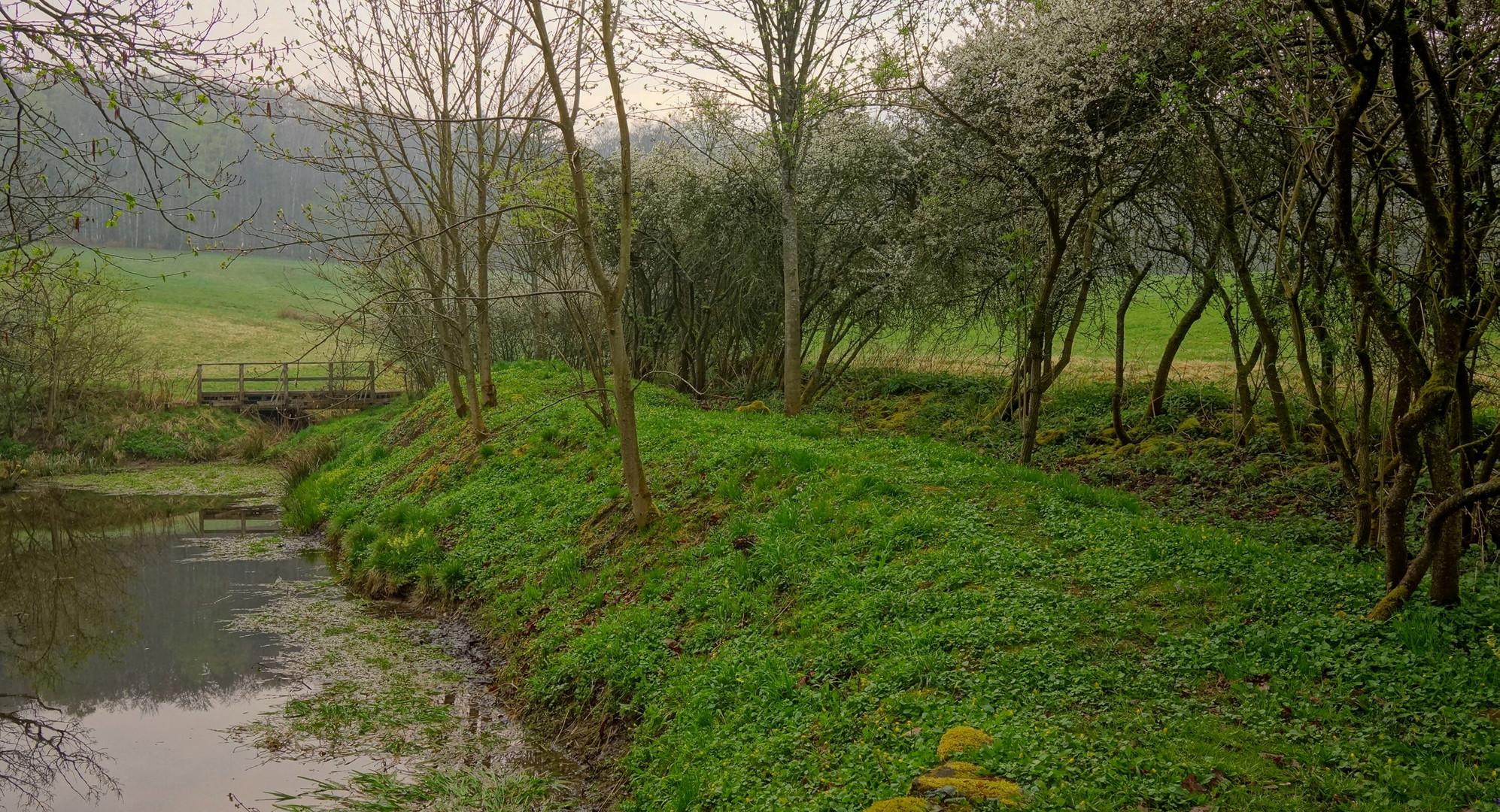 Das Grün des Frühlings IV (el verde de la primavera IV)