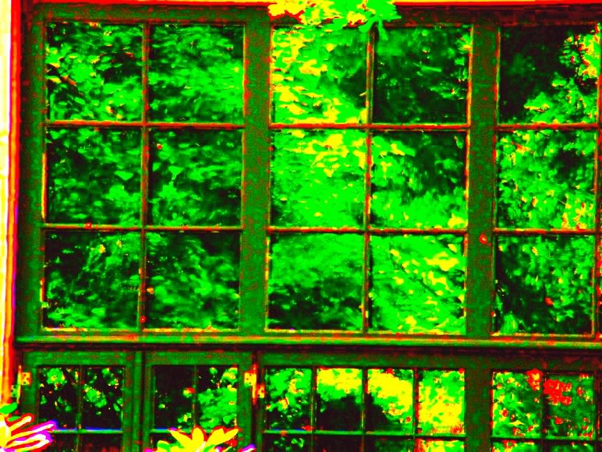 Das grüne Fenster