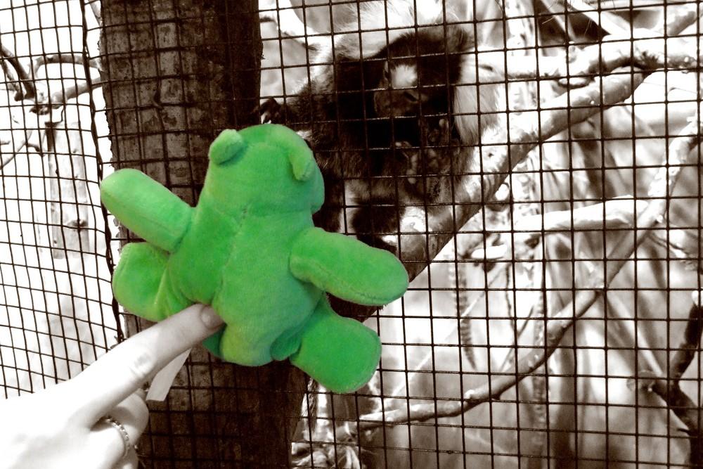 Das grüne Nilpferd ärgert ein Äffchen