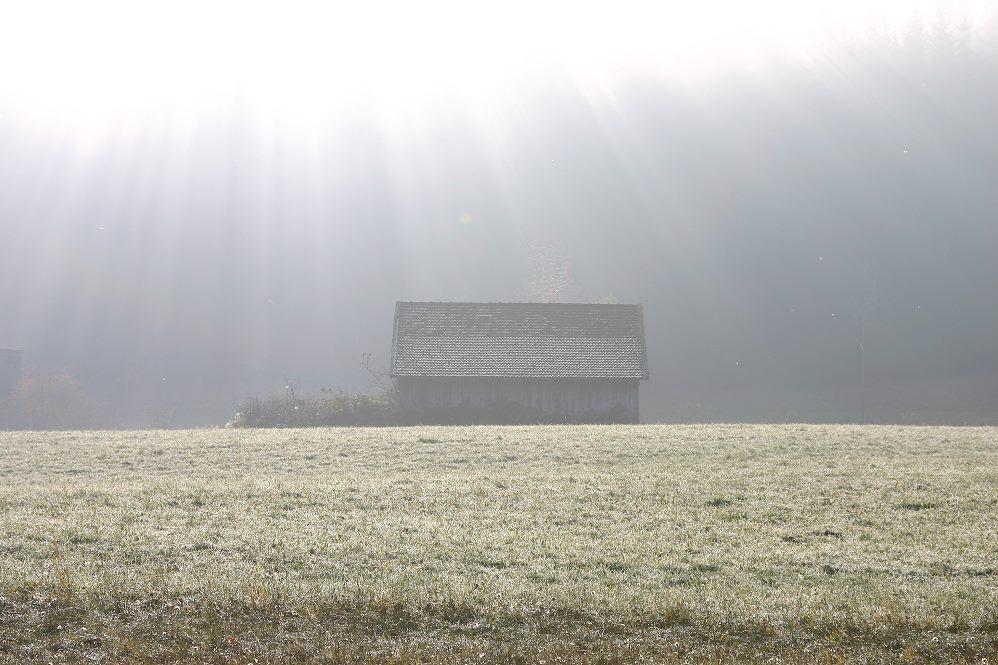 Das Haus am Licht