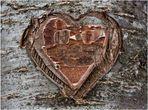 Das Herz im Baum